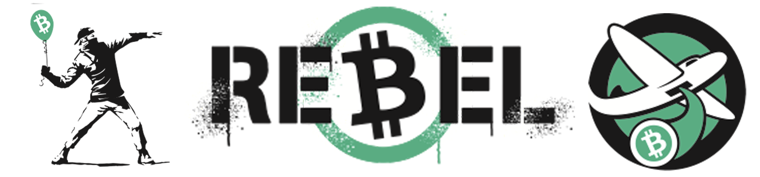 Bitcoin Is a Viable Way to Remove the State From Your Life