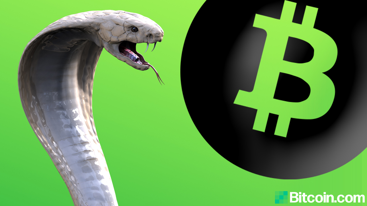 Craig Wright's Law Firm Granted Permission from High Court to Serve Bitcoin.org Operator Cobra